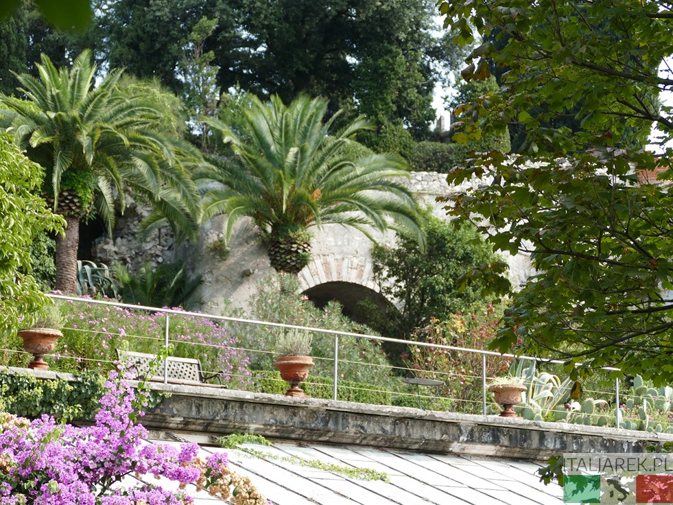 Isola del Garda - ogród