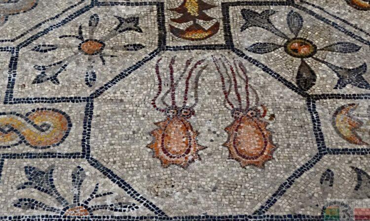 Akwileja - mozaiki w bazylice