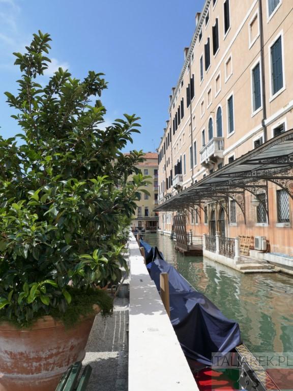 Giardini Reali - jeden dzień w Wenecji