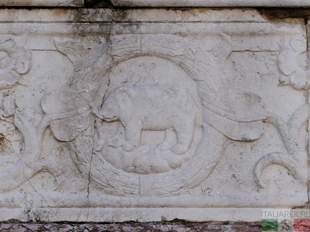 Słoń na fasadzie Tempio