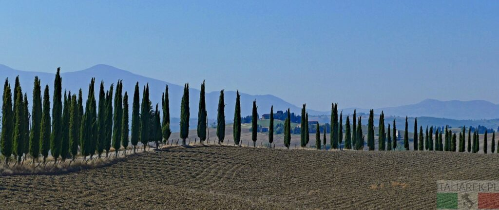 Po drodze do klasztoru na Monte Oliveto