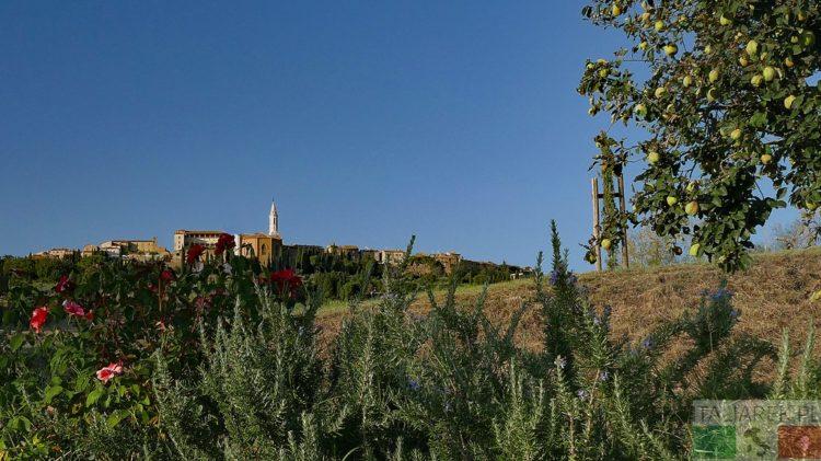 Pienza - panorama z Il Casalino