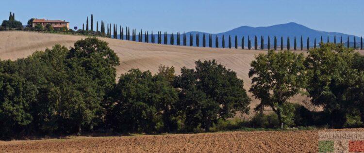 Cyprysy i dom na wzgórzu